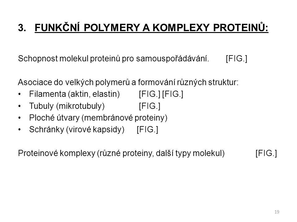 3.FUNKČNÍ POLYMERY A KOMPLEXY PROTEINŮ: Schopnost molekul proteinů pro samouspořádávání.[FIG.] Asociace do velkých polymerů a formování různých strukt