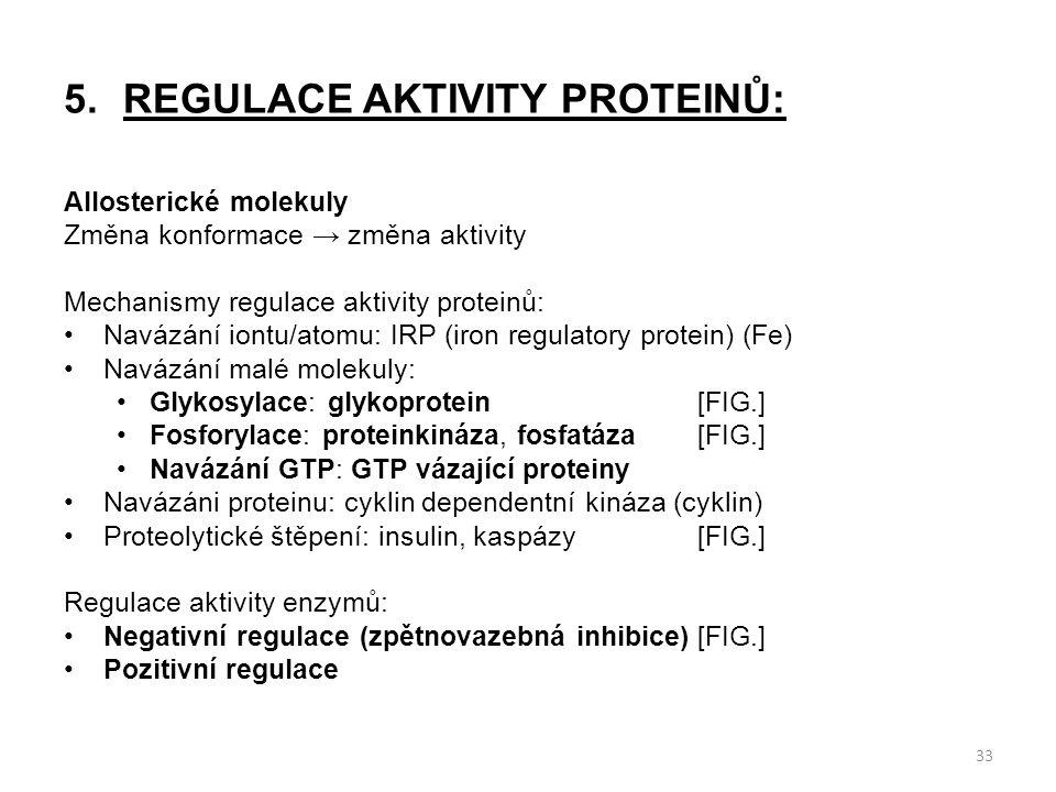 5.REGULACE AKTIVITY PROTEINŮ: Allosterické molekuly Změna konformace → změna aktivity Mechanismy regulace aktivity proteinů: Navázání iontu/atomu: IRP