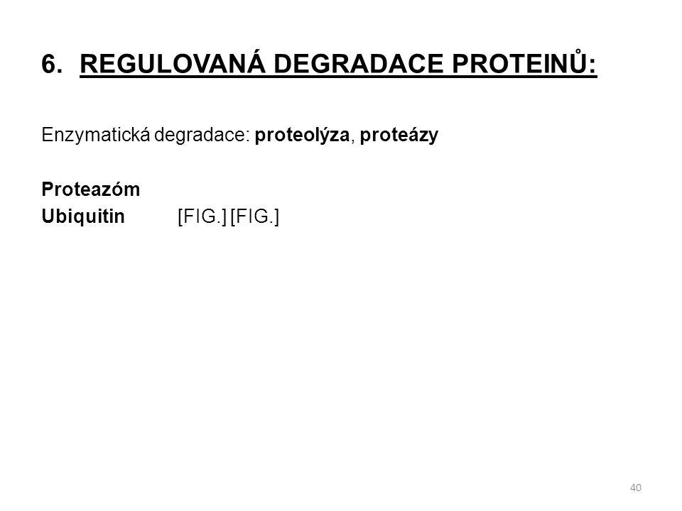 6.REGULOVANÁ DEGRADACE PROTEINŮ: Enzymatická degradace: proteolýza, proteázy Proteazóm Ubiquitin[FIG.] [FIG.] 40