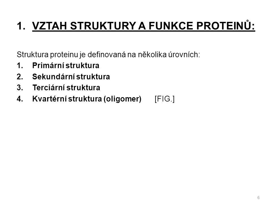 1.VZTAH STRUKTURY A FUNKCE PROTEINŮ: Struktura proteinu je definovaná na několika úrovních: 1.Primární struktura 2.Sekundární struktura 3.Terciární st