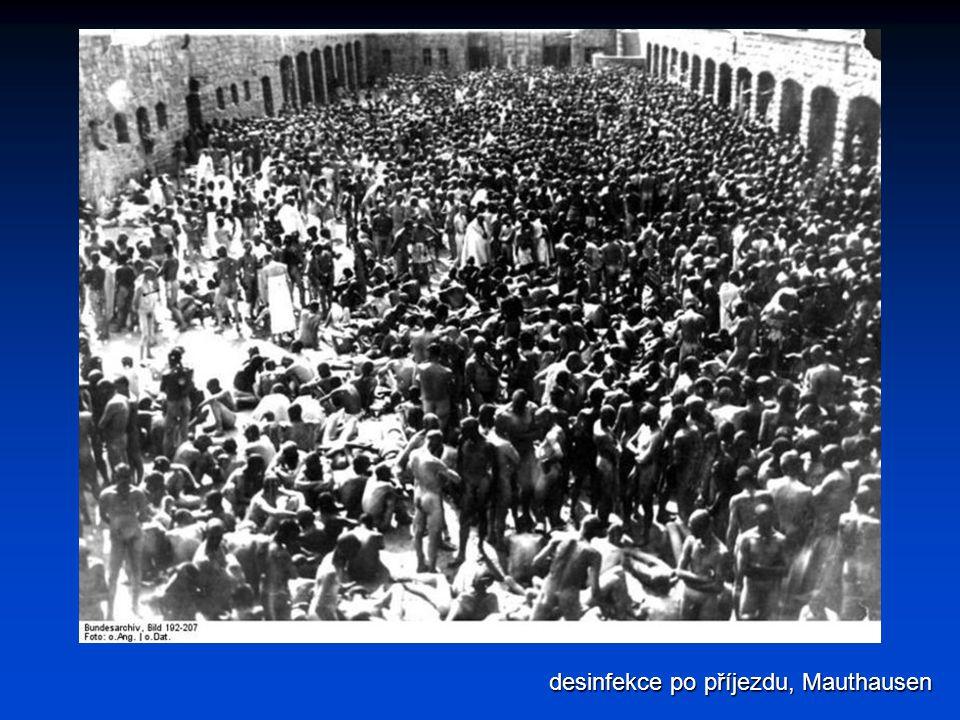 desinfekce po příjezdu, Mauthausen