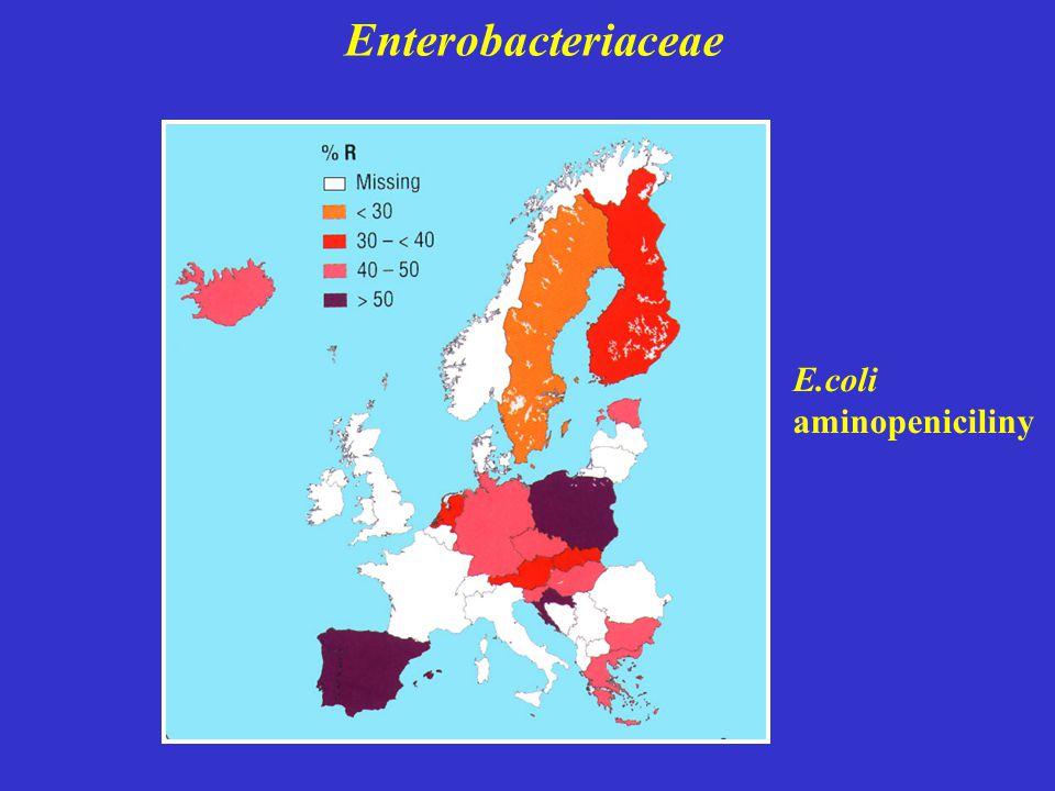 Enterobacteriaceae E.coli aminopeniciliny