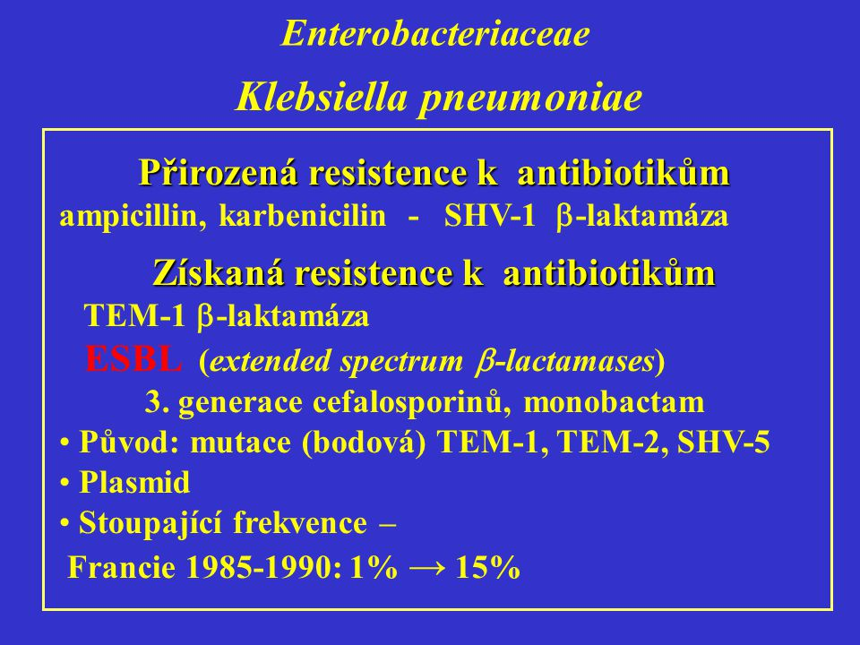 Enterobacteriaceae Klebsiella pneumoniae Přirozená resistence k antibiotikům ampicillin, karbenicilin - SHV-1  -laktamáza Získaná resistence k antibiotikům TEM-1  -laktamáza ESBL (extended spectrum  -lactamases) 3.