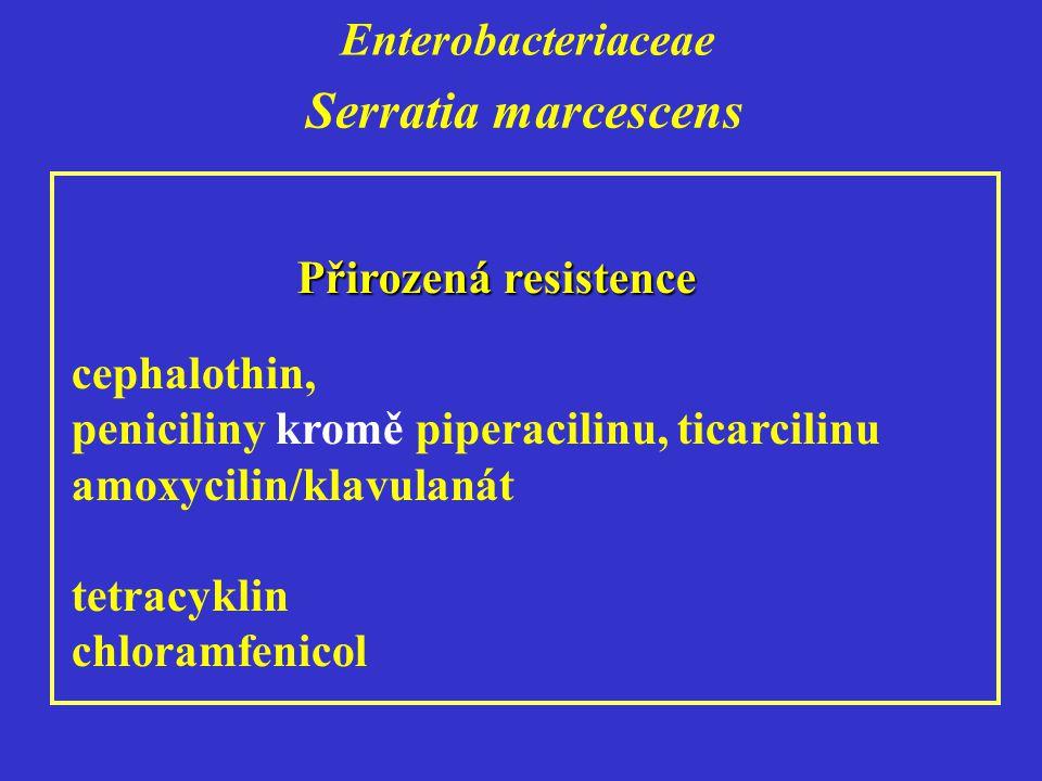 Enterobacteriaceae Serratia marcescens cephalothin, peniciliny kromě piperacilinu, ticarcilinu amoxycilin/klavulanát tetracyklin chloramfenicol Přirozená resistence