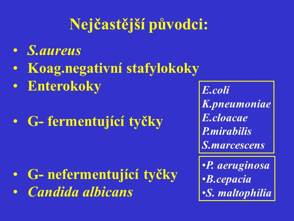 Nejčastější původci: S.aureus Koag.negativní stafylokoky Enterokoky G- fermentující tyčky G- nefermentující tyčky Candida albicans E.coli K.pneumoniae E.cloacae P.mirabilis S.marcescens P.