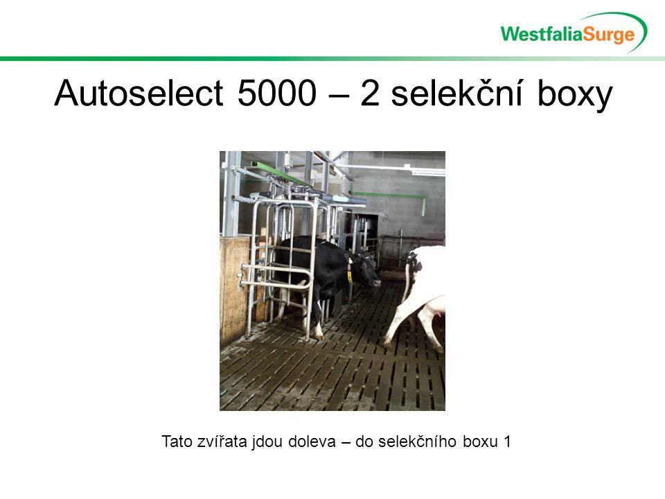 Autoselect 5000 – 2 selekční boxy Tato zvířata jdou doleva – do selekčního boxu 1