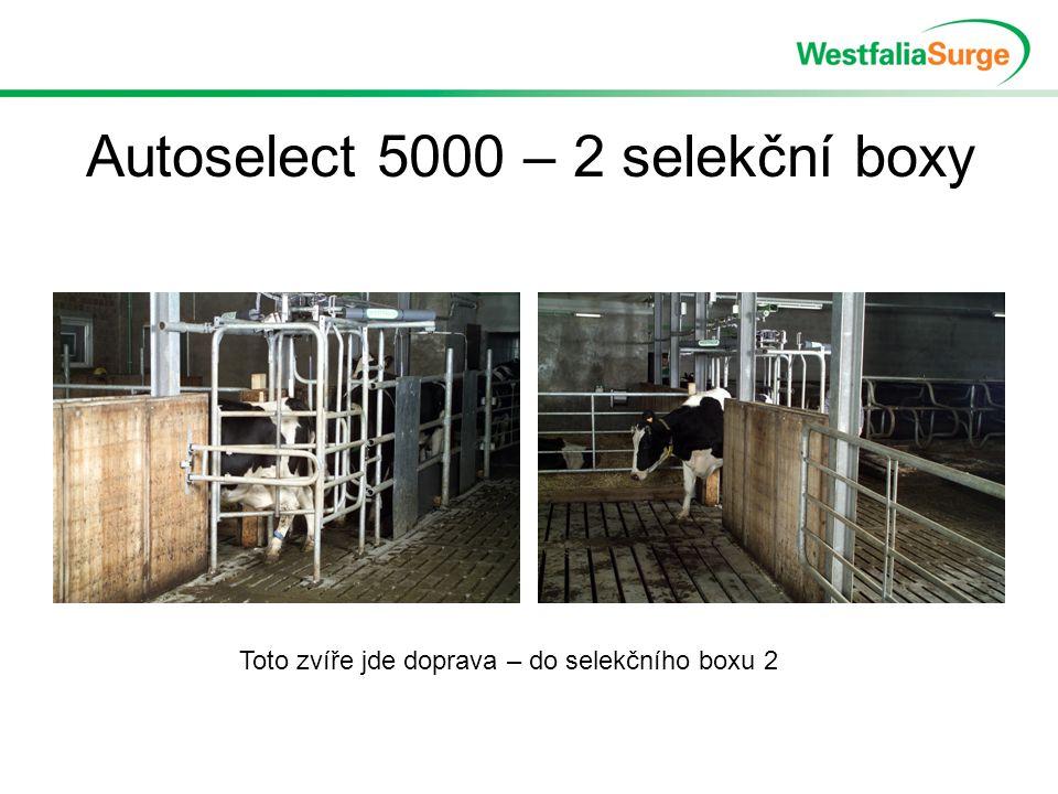 Autoselect 5000 – 2 selekční boxy Toto zvíře jde doprava – do selekčního boxu 2