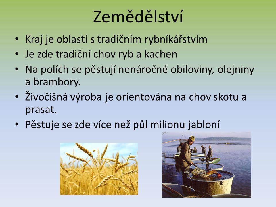 Zemědělství Kraj je oblastí s tradičním rybníkářstvím Je zde tradiční chov ryb a kachen Na polích se pěstují nenáročné obiloviny, olejniny a brambory.