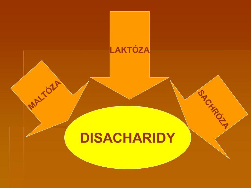 DISACHARIDY LAKTÓZA MALTÓZA SACHRÓZA
