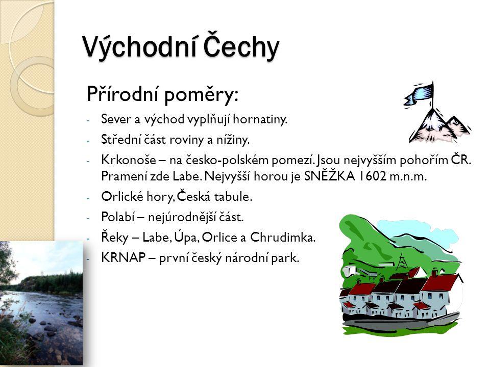 Východní Čechy Hospodářství: - Polabí – pěstuje se zde cukrovka a pšenice.