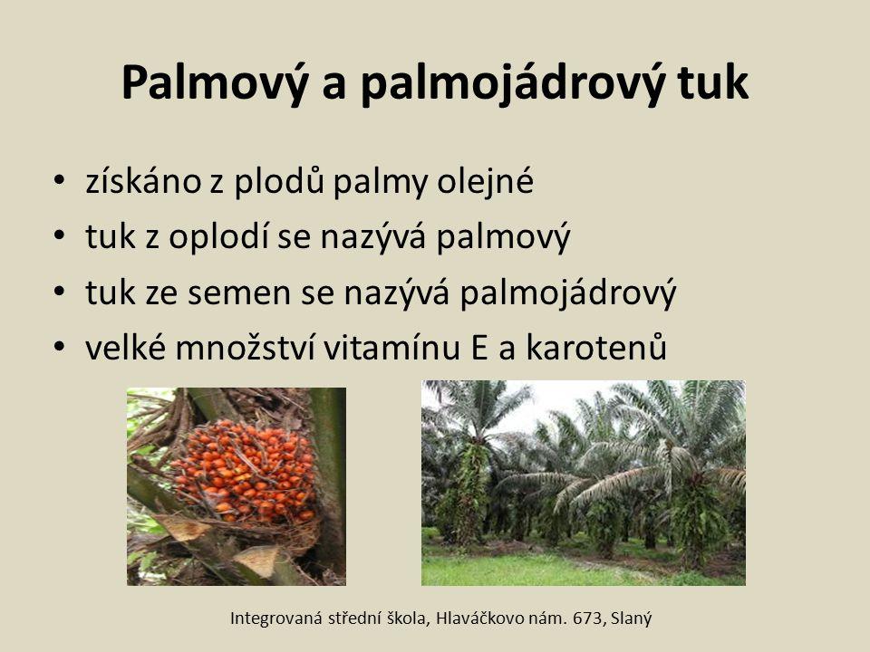 Palmový a palmojádrový tuk získáno z plodů palmy olejné tuk z oplodí se nazývá palmový tuk ze semen se nazývá palmojádrový velké množství vitamínu E a