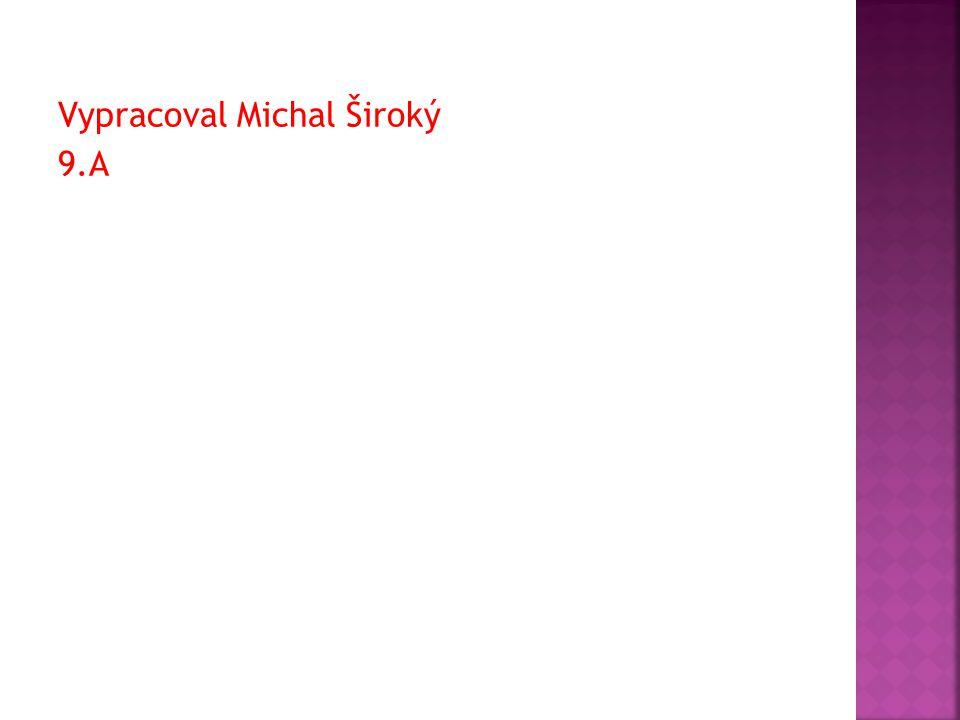 Vypracoval Michal Široký 9.A