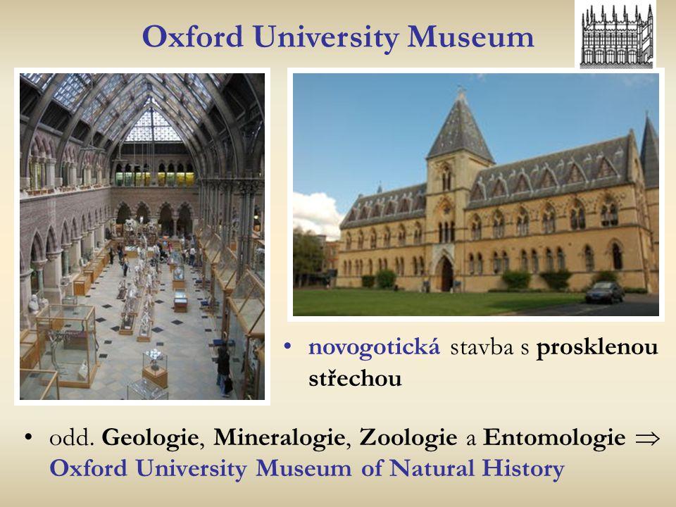 Oxford University Museum odd. Geologie, Mineralogie, Zoologie a Entomologie  Oxford University Museum of Natural History novogotická stavba s proskle