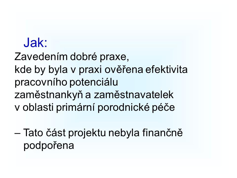 Jak: Zavedením dobré praxe, kde by byla v praxi ověřena efektivita pracovního potenciálu zaměstnankyň a zaměstnavatelek v oblasti primární porodnické péče – Tato část projektu nebyla finančně podpořena