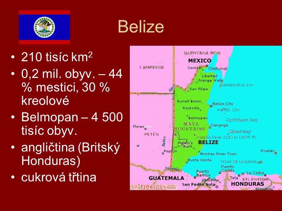 Belize 210 tisíc km 2 0,2 mil. obyv. – 44 % mestici, 30 % kreolové Belmopan – 4 500 tisíc obyv. angličtina (Britský Honduras) cukrová třtina