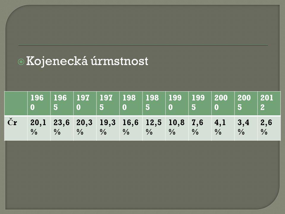  Kojenecká úrmstnost 196 0 196 5 197 0 197 5 198 0 198 5 199 0 199 5 200 0 200 5 201 2 ČrČr20,1 % 23,6 % 20,3 % 19,3 % 16,6 % 12,5 % 10,8 % 7,6 % 4,1