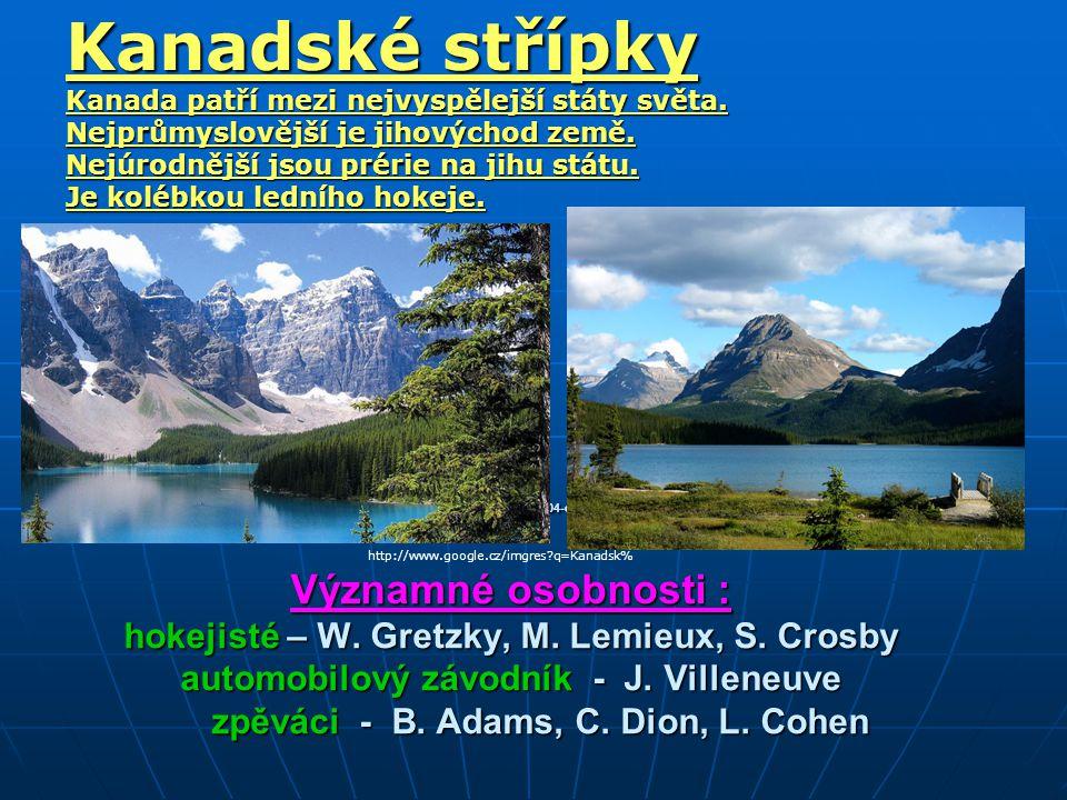 http://media.novinky.cz/010/160104-original1-73gen.jpg Významné osobnosti : hokejisté – W.