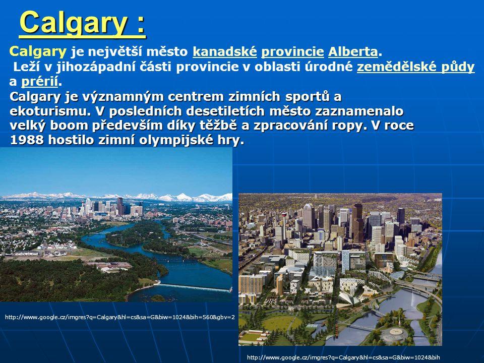 Calgary : Calgary je významným centrem zimních sportů a ekoturismu.