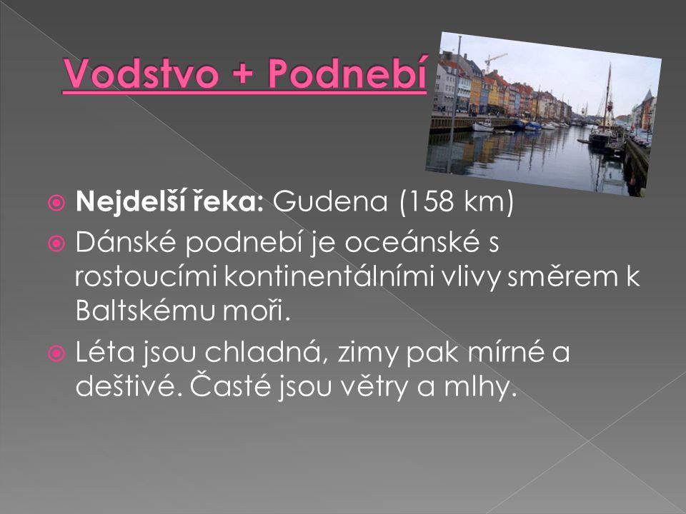  Nejdelší řeka: Gudena (158 km)  Dánské podnebí je oceánské s rostoucími kontinentálními vlivy směrem k Baltskému moři.  Léta jsou chladná, zimy pa