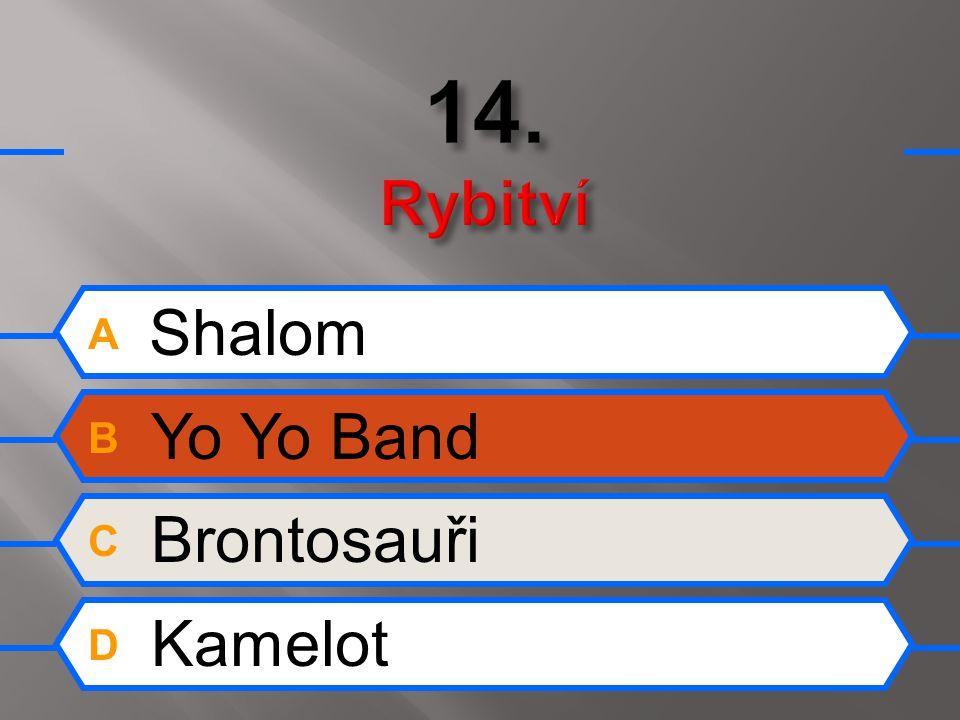 A Shalom B Yo Yo Band C Brontosauři D Kamelot