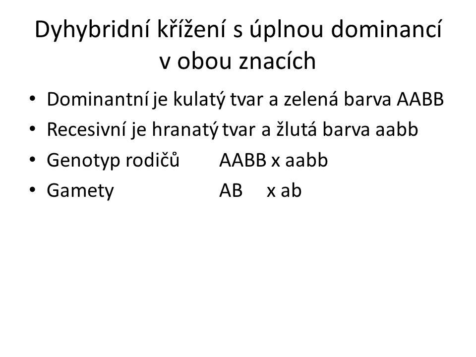Dyhybridní křížení s úplnou dominancí v obou znacích Dominantní je kulatý tvar a zelená barva AABB Recesivní je hranatý tvar a žlutá barva aabb Genoty