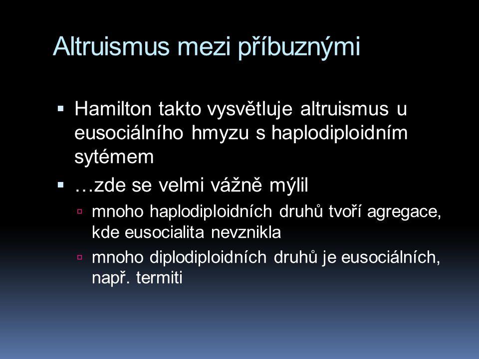 Altruismus mezi příbuznými  Hamilton takto vysvětluje altruismus u eusociálního hmyzu s haplodiploidním sytémem  …zde se velmi vážně mýlil  mnoho haplodiploidních druhů tvoří agregace, kde eusocialita nevznikla  mnoho diplodiploidních druhů je eusociálních, např.