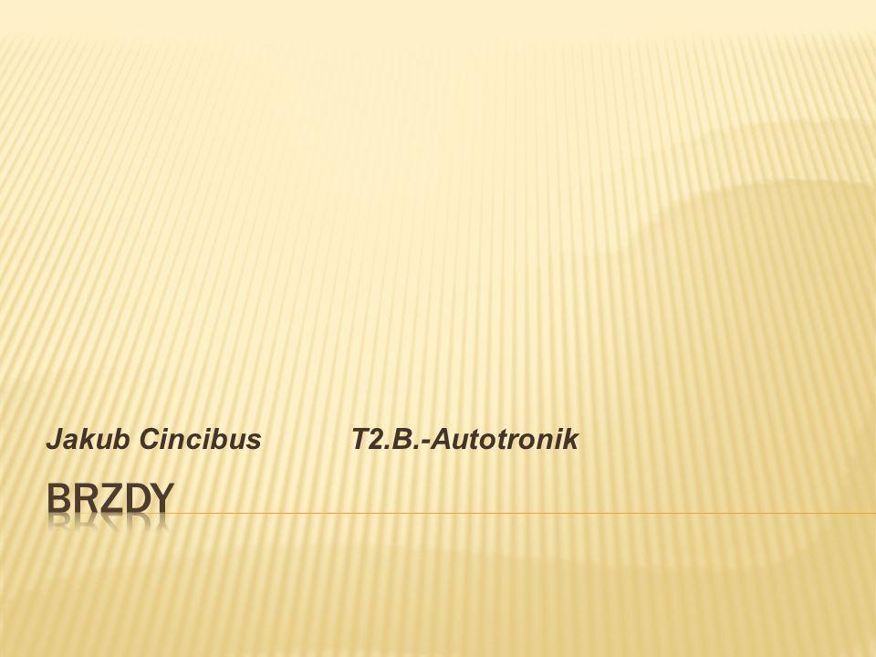 Jakub Cincibus T2.B.-Autotronik
