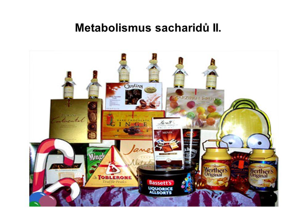 Metabolismus sacharidů II.