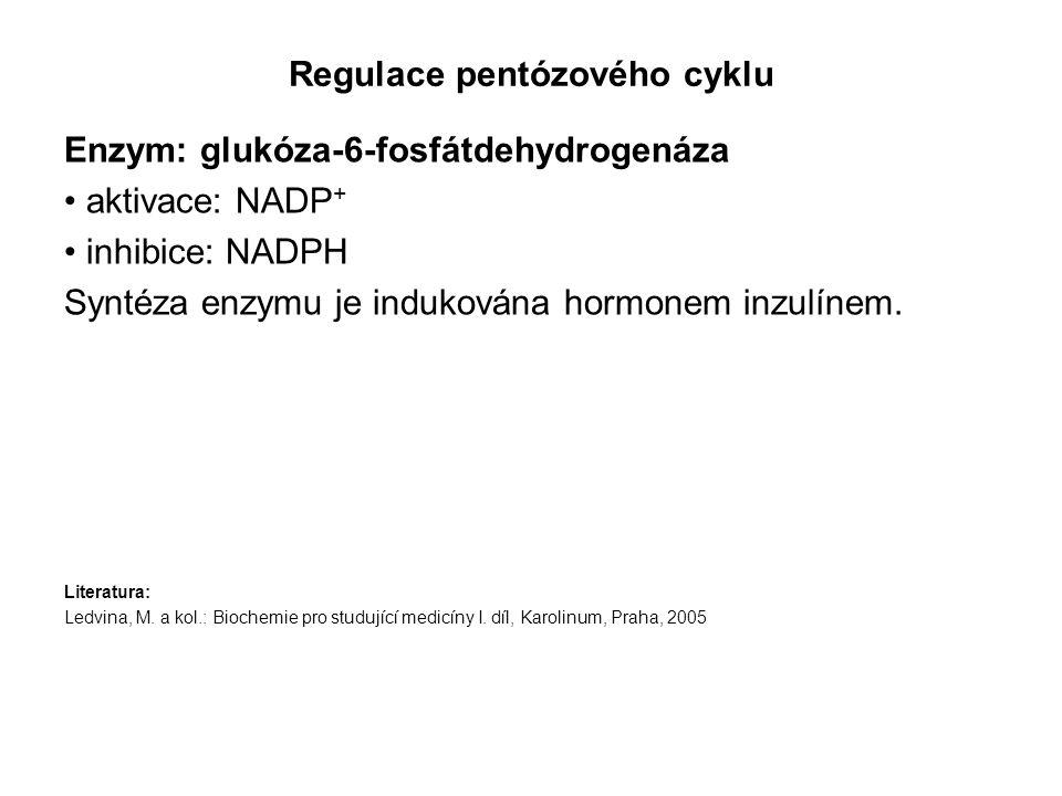 Regulace pentózového cyklu Enzym: glukóza-6-fosfátdehydrogenáza aktivace: NADP + inhibice: NADPH Syntéza enzymu je indukována hormonem inzulínem. Lite