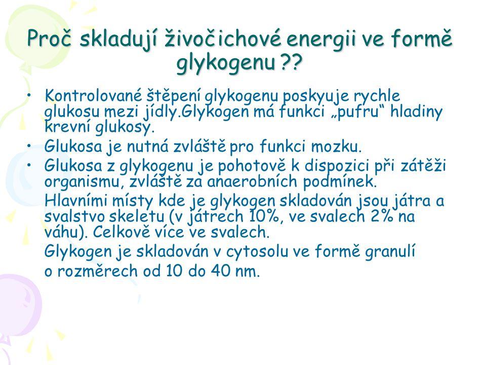 Proč skladují živočichové energii ve formě glykogenu ?.