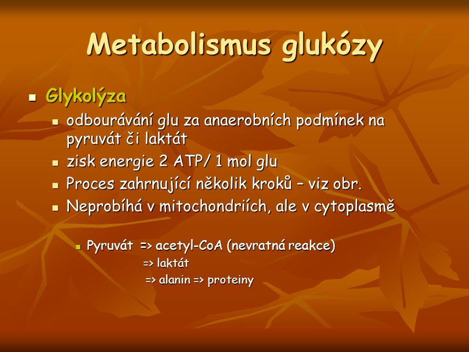 Metabolismus glukózy Glykolýza Glykolýza odbourávání glu za anaerobních podmínek na pyruvát či laktát odbourávání glu za anaerobních podmínek na pyruv