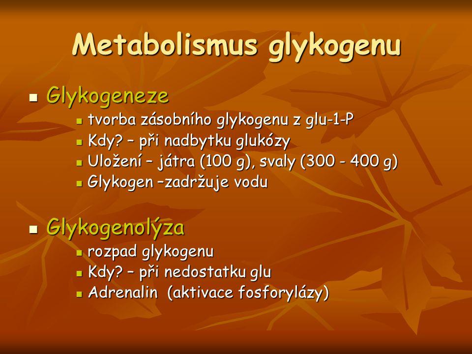 Metabolismus glykogenu Glykogeneze Glykogeneze tvorba zásobního glykogenu z glu-1-P tvorba zásobního glykogenu z glu-1-P Kdy? – při nadbytku glukózy K
