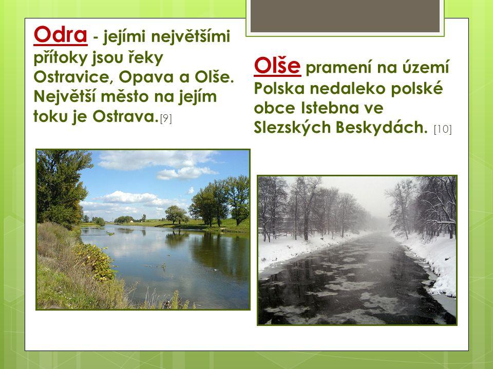 Odra - jejími největšími přítoky jsou řeky Ostravice, Opava a Olše. Největší město na jejím toku je Ostrava. [9] Olše pramení na území Polska nedaleko
