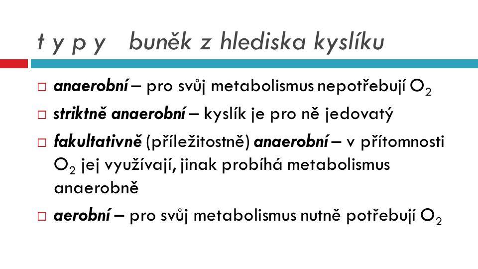 t y p y buněk z hlediska kyslíku  anaerobní – pro svůj metabolismus nepotřebují O 2  striktně anaerobní – kyslík je pro ně jedovatý  fakultativně (