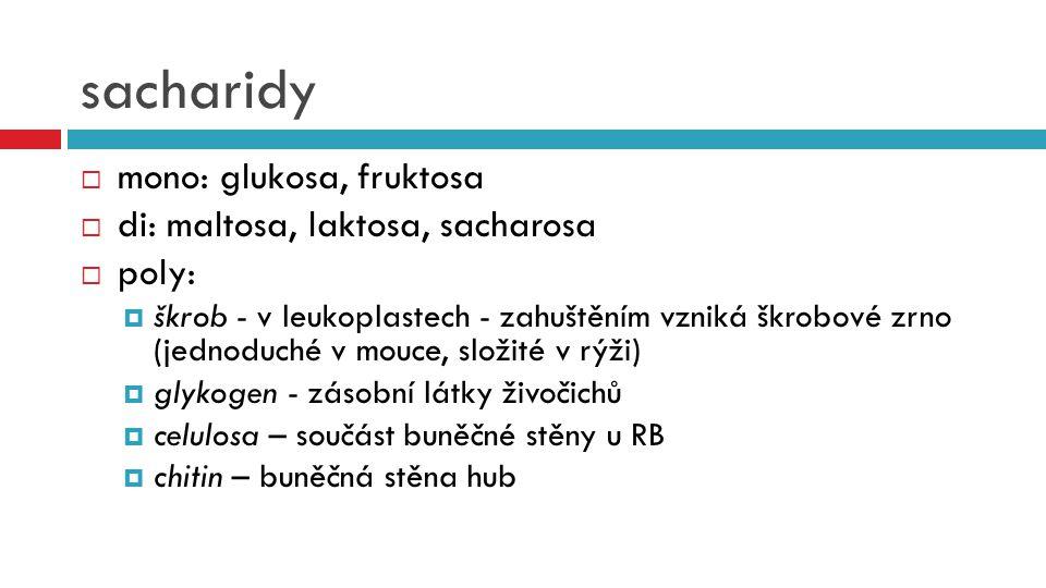 sacharidy  mono: glukosa, fruktosa  di: maltosa, laktosa, sacharosa  poly:  škrob - v leukoplastech - zahuštěním vzniká škrobové zrno (jednoduché
