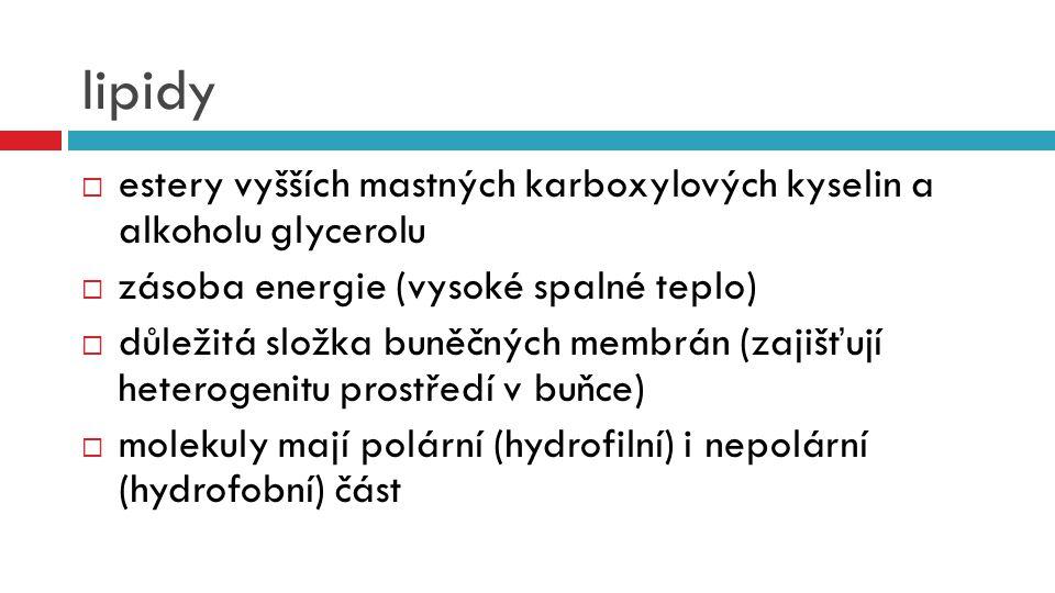 lipidy  estery vyšších mastných karboxylových kyselin a alkoholu glycerolu  zásoba energie (vysoké spalné teplo)  důležitá složka buněčných membrán