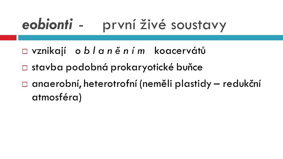 eobionti - první živé soustavy  vznikají o b l a n ě n í m koacervátů  stavba podobná prokaryotické buňce  anaerobní, heterotrofní (neměli plastidy