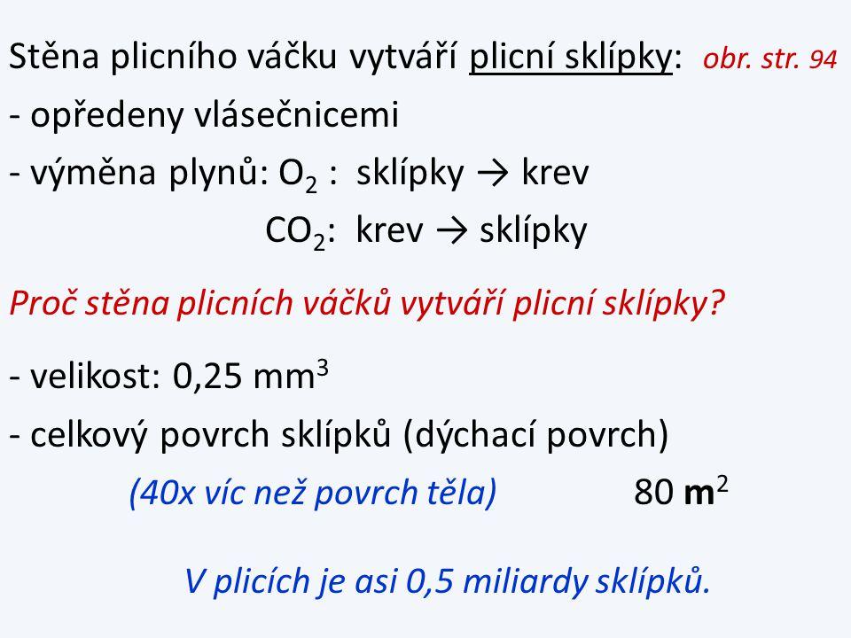 Stěna plicního váčku vytváří plicní sklípky: obr. str.
