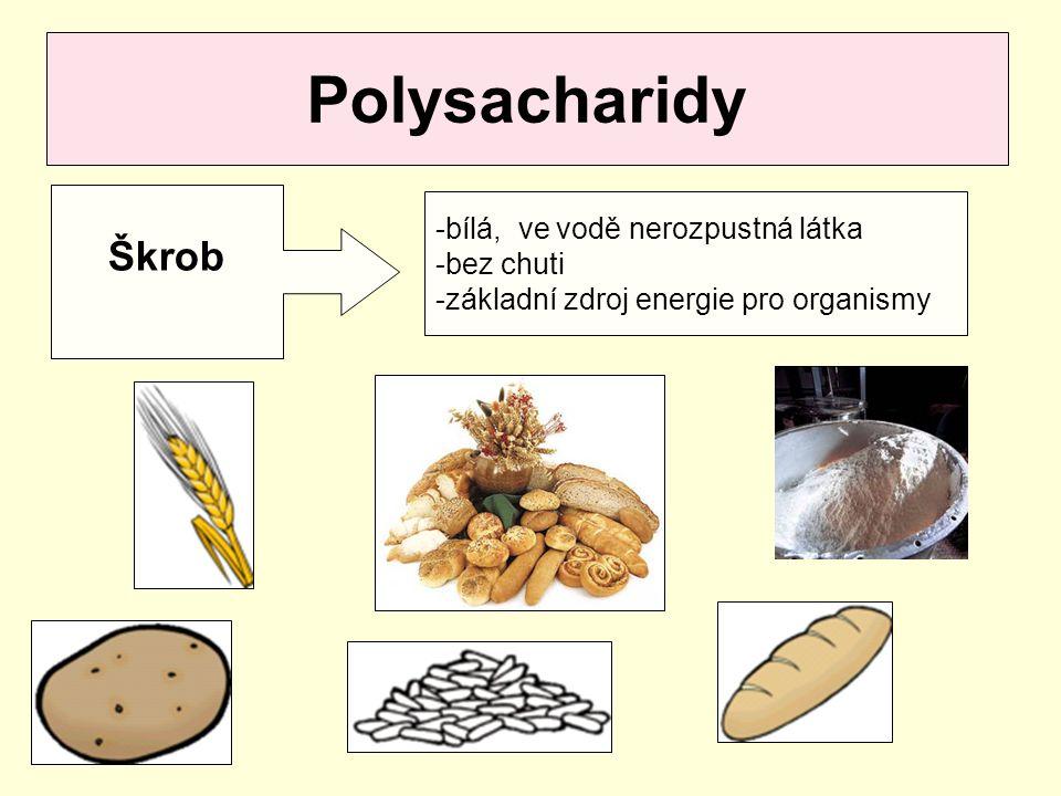 Polysacharidy Škrob -bílá, ve vodě nerozpustná látka -bez chuti -základní zdroj energie pro organismy