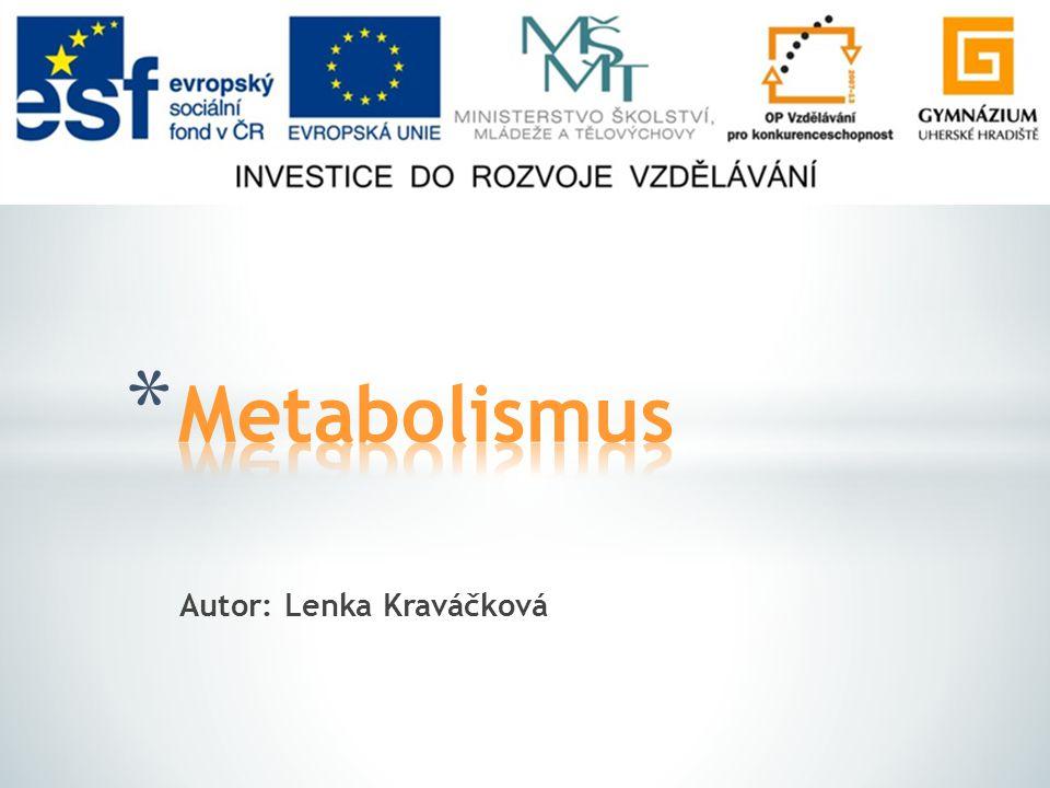 * Metabolismus cukrů Metabolismus cukrů * Metabolismus tuků Metabolismus tuků * Metabolismus bílkovin Metabolismus bílkovin * Schéma metabolismu Schéma metabolismu * Seznam použitých zdrojů Seznam použitých zdrojů
