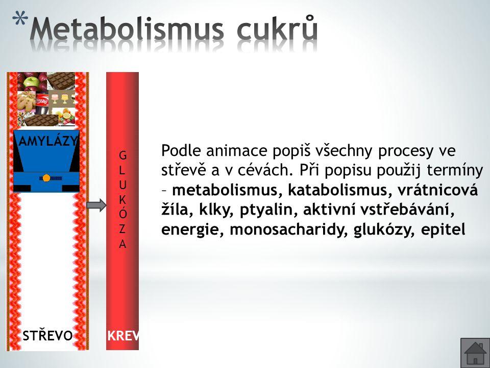 TUKY GLYKOGEN GLUKÓZA TUKOVÁ TKÁŇ CO ₂ + H₂O + ENERGIE TKÁNĚ KREV GLUKÓZAGLUKÓZA JÁTRA Popiš putování glukózy organismem.