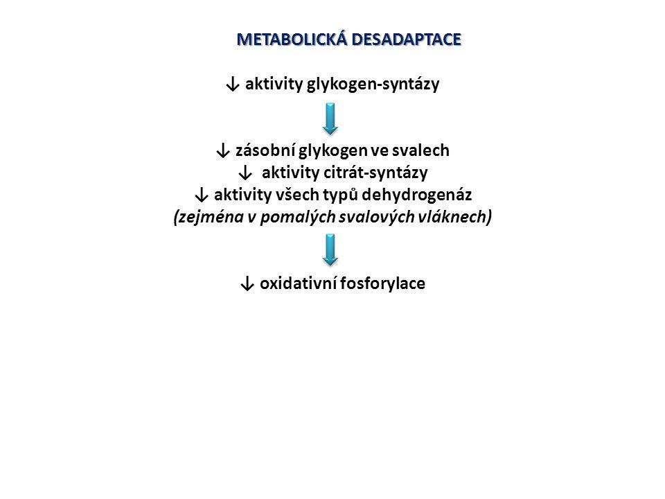 METABOLICKÁ DESADAPTACE ↓ aktivity glykogen-syntázy ↓ zásobní glykogen ve svalech ↓ aktivity citrát-syntázy ↓ aktivity všech typů dehydrogenáz (zejmén