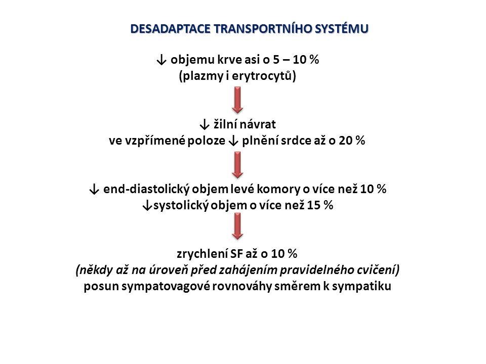 DESADAPTACE TRANSPORTNÍHO SYSTÉMU ↓ objemu krve asi o 5 – 10 % (plazmy i erytrocytů) ↓ žilní návrat ve vzpřímené poloze ↓ plnění srdce až o 20 % ↓ end
