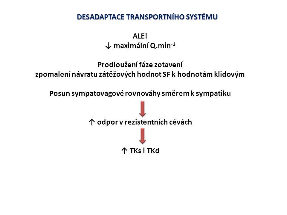 DESADAPTACE TRANSPORTNÍHO SYSTÉMU ALE! ↓ maximální Q.min -1 Prodloužení fáze zotavení zpomalení návratu zátěžových hodnot SF k hodnotám klidovým Posun