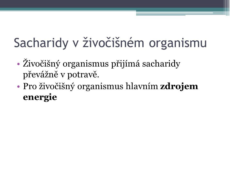Sacharidy v živočišném organismu Živočišný organismus přijímá sacharidy převážně v potravě.
