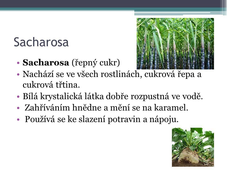 Sacharosa Sacharosa (řepný cukr) Nachází se ve všech rostlinách, cukrová řepa a cukrová třtina.