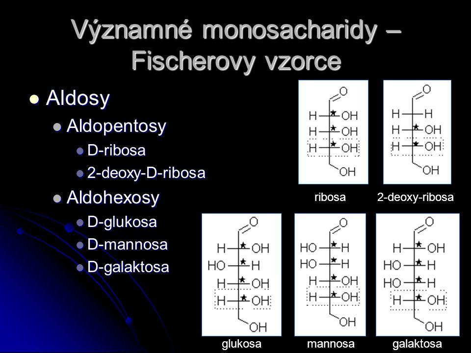 Významné monosacharidy – Fischerovy vzorce Aldosy Aldosy Aldopentosy Aldopentosy D-ribosa D-ribosa 2-deoxy-D-ribosa 2-deoxy-D-ribosa Aldohexosy Aldohe