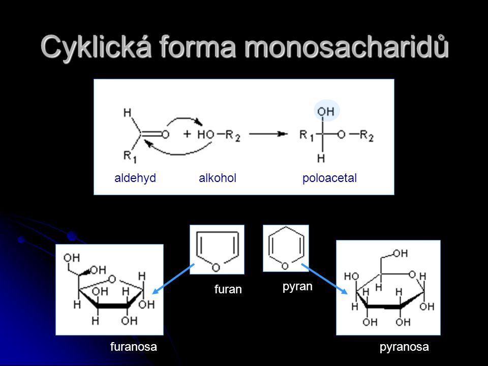 Cyklická forma monosacharidů aldehydalkoholpoloacetal furan pyran furanosapyranosa