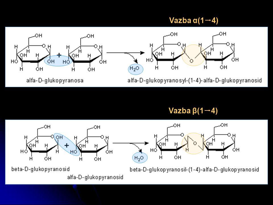 Vazba α(1  4) Vazba β(1  4)