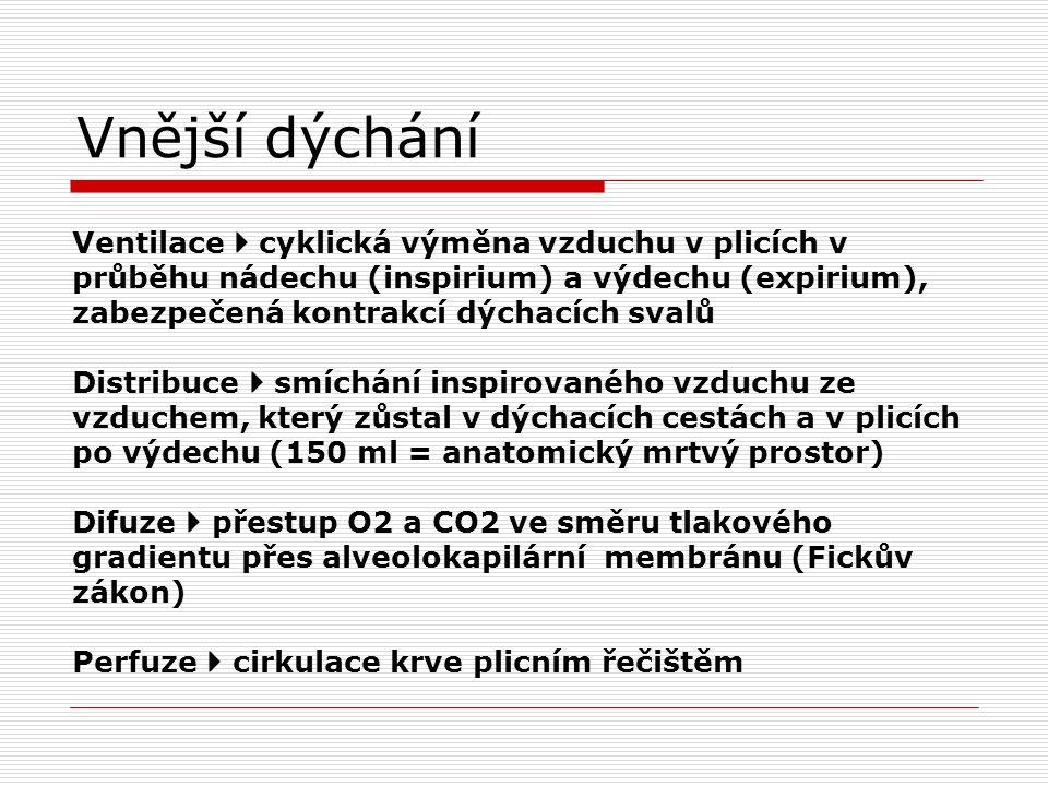 Vnější dýchání Ventilace  cyklická výměna vzduchu v plicích v průběhu nádechu (inspirium) a výdechu (expirium), zabezpečená kontrakcí dýchacích svalů Distribuce  smíchání inspirovaného vzduchu ze vzduchem, který zůstal v dýchacích cestách a v plicích po výdechu (150 ml = anatomický mrtvý prostor) Difuze  přestup O2 a CO2 ve směru tlakového gradientu přes alveolokapilární membránu (Fickův zákon) Perfuze  cirkulace krve plicním řečištěm